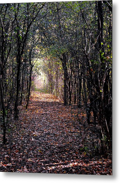 Light At The End Of The Path Metal Print