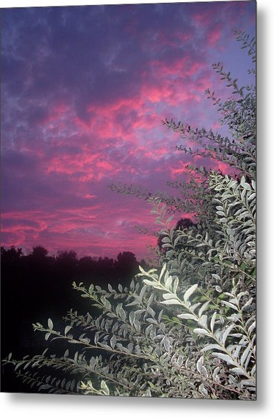 Light Before The Dark Metal Print by Warren Thompson