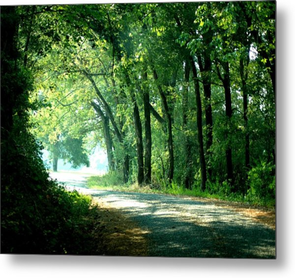 Lighted Path Metal Print by Lynn Reid