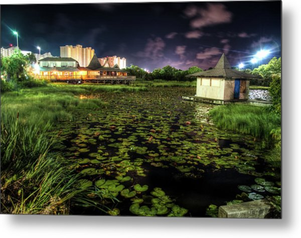 Lilly Pads On The Pond Metal Print