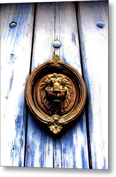 Lion Dreams Metal Print