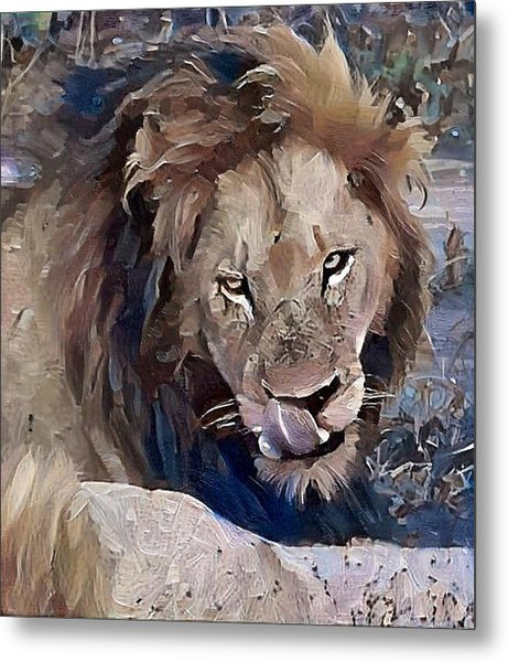 Lion With Tongue Metal Print