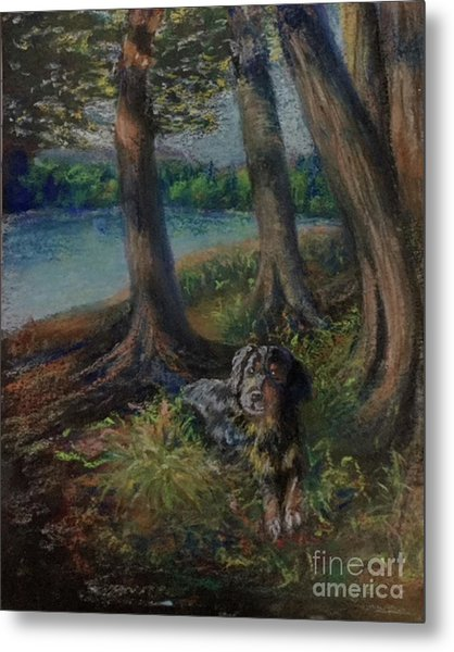 Listening To The Tales Of The Trees Metal Print