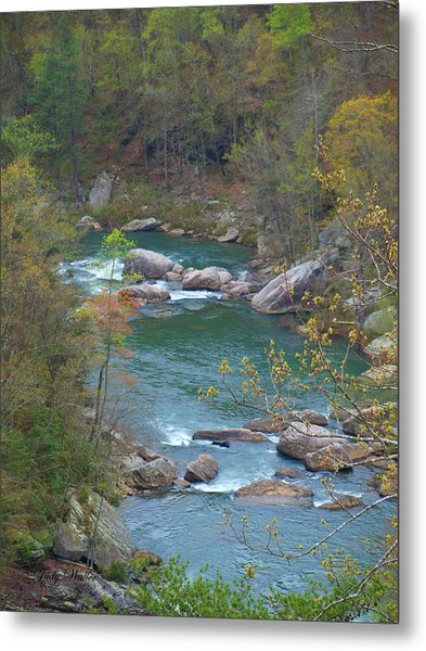 Little River Canyon Metal Print by Judy  Waller