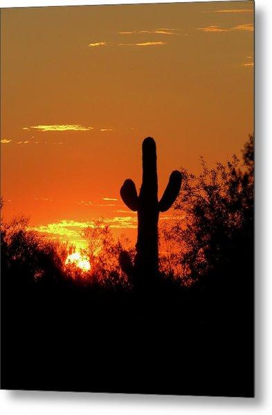 Lone Saguaro Sunrise Metal Print