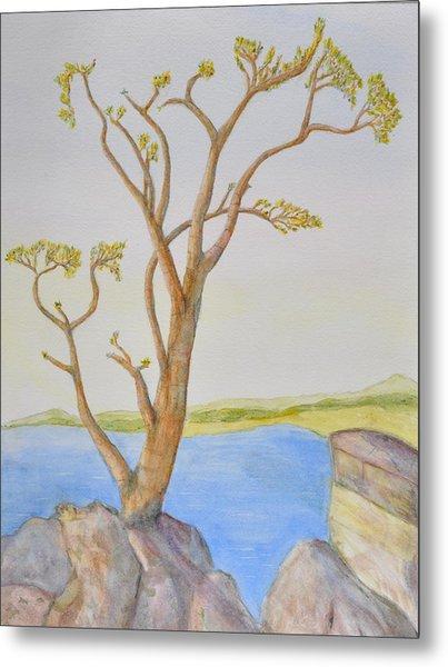 Lone Tree On The Ocean Metal Print by Jonathan Galente