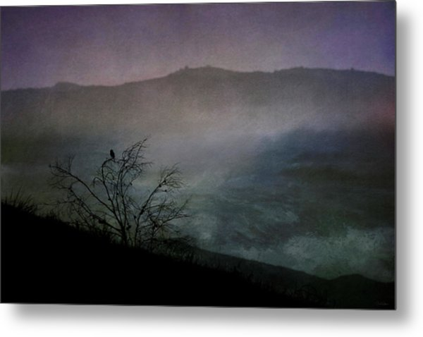 Lonesome Point Metal Print