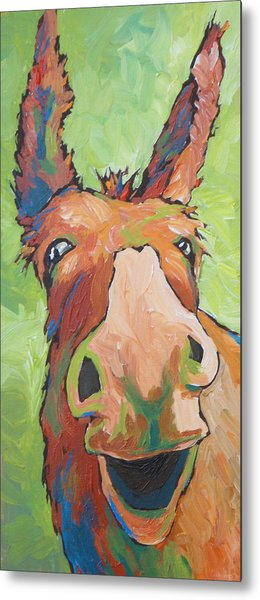 Long Face Metal Print by Sandy Tracey