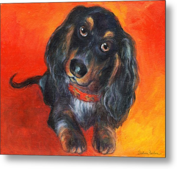 Long Haired Dachshund Dog Puppy Portrait Painting Metal Print