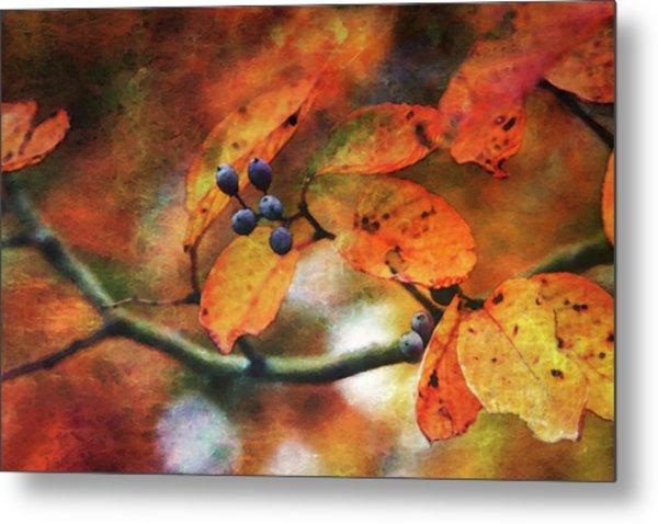 Lost Autumns Beauty 6570 Ldp_2 Metal Print