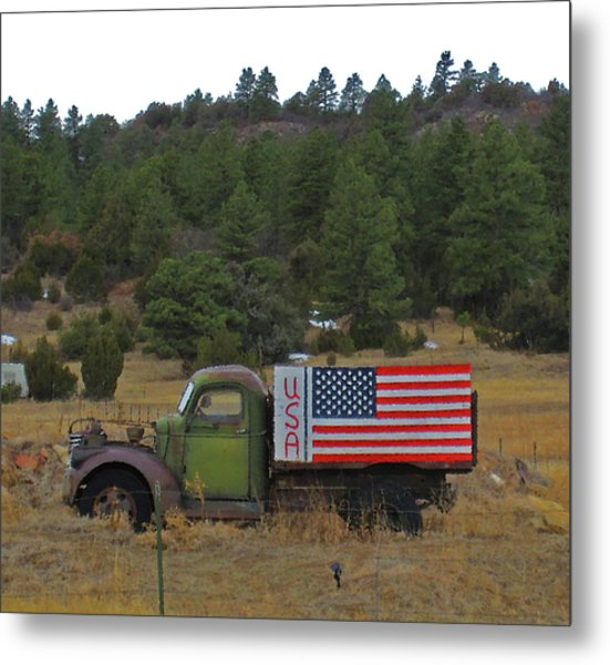 Love Usa Metal Print