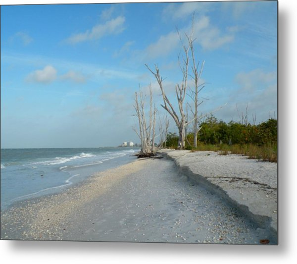 Lovers Key Beach Metal Print by Rosalie Scanlon