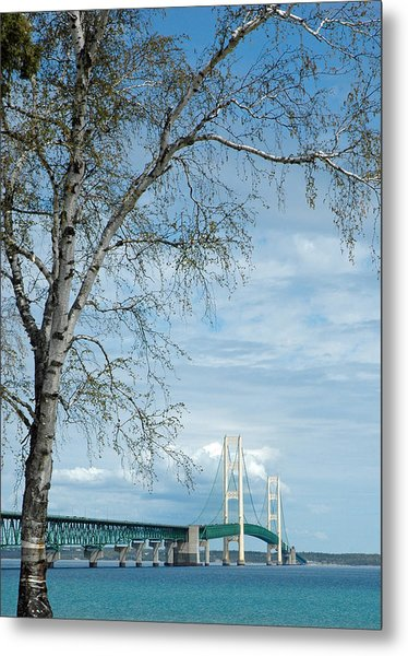 Mackinac Bridge Birch Metal Print