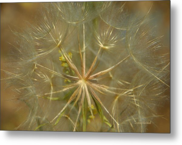 Make A Wish Metal Print
