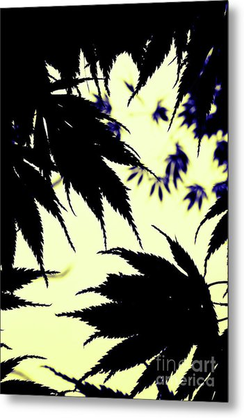 Maple Silhouette Metal Print