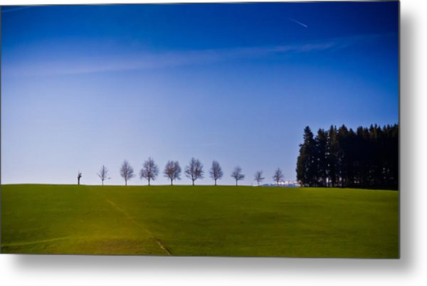 March To The Forest Metal Print