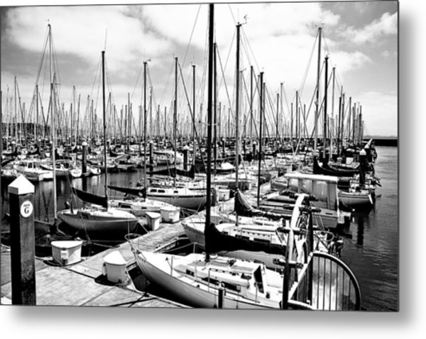 Marina In Black And White Metal Print by Sean Gillespie