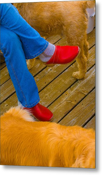 Marys Red Shoes Metal Print by John Toxey