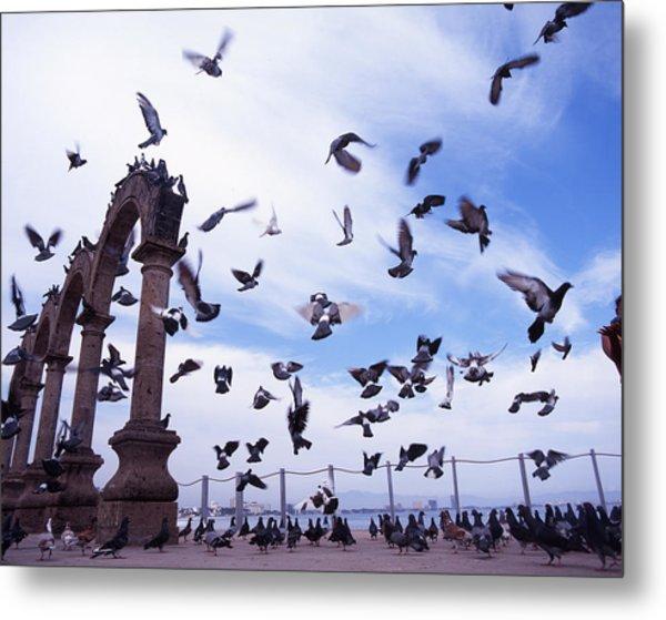 Mexican Pigeon Ruins Metal Print by Benjamin Garvey