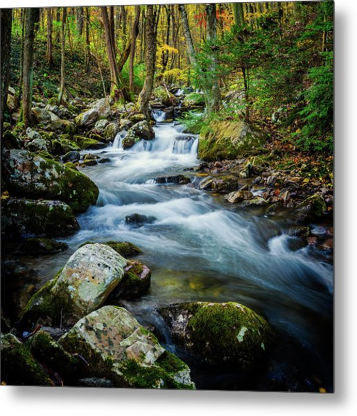 Mill Creek In Fall #3 Metal Print