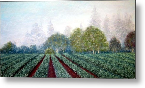 Misty Blue Metal Print by Carl Capps