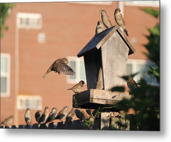 Morning Breakfast Metal Print