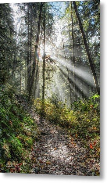 Morning Hike Metal Print