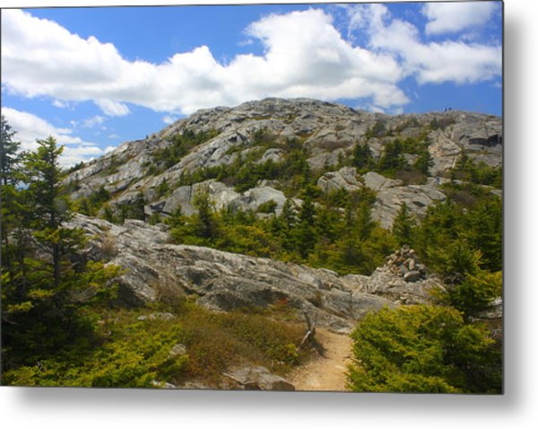 Mount Monadnock Summit From Pumpelly Trail Metal Print