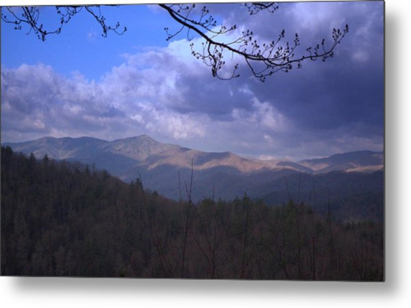 Mountain Sunrise Metal Print by Wayne Skeen
