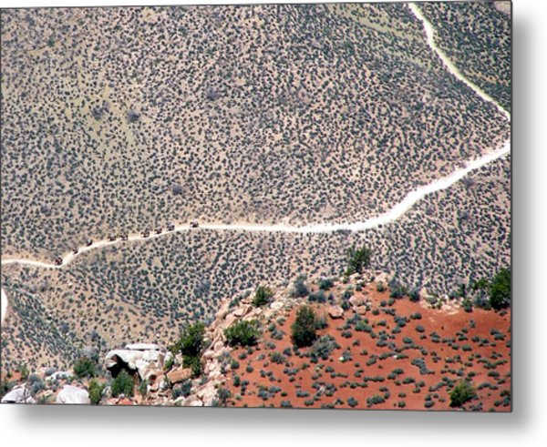Mule Train On Grand Canyon Bottom Metal Print by Jeanette Oberholtzer