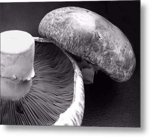Mushrooms In Black And White Metal Print