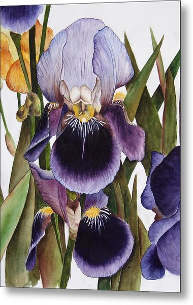 My Iris Garden Metal Print by Mary Gaines