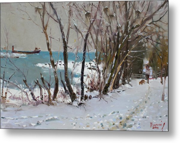 Naked Trees By The Lake Shore Metal Print