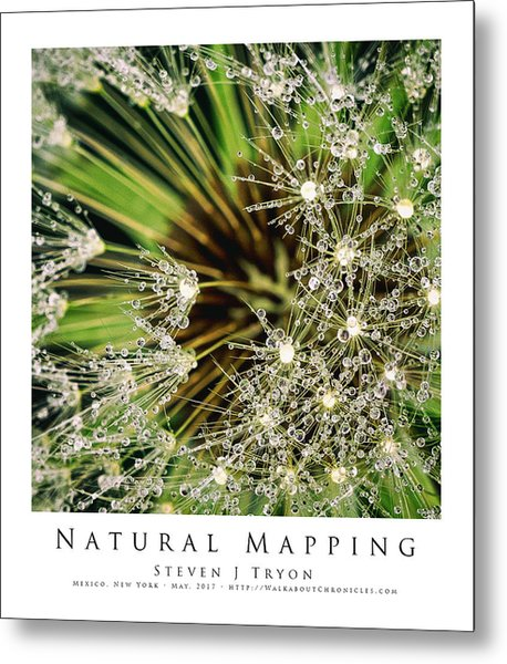 Natural Mapping Metal Print by Steven Tryon