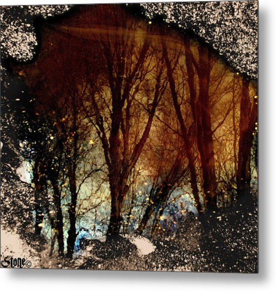 Natures Looking Glass 3 Metal Print