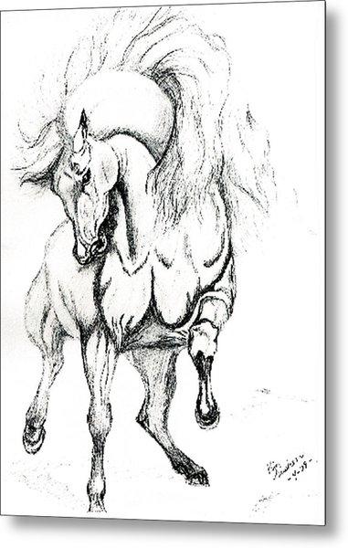 Noble Stallion Metal Print by Kim Souza