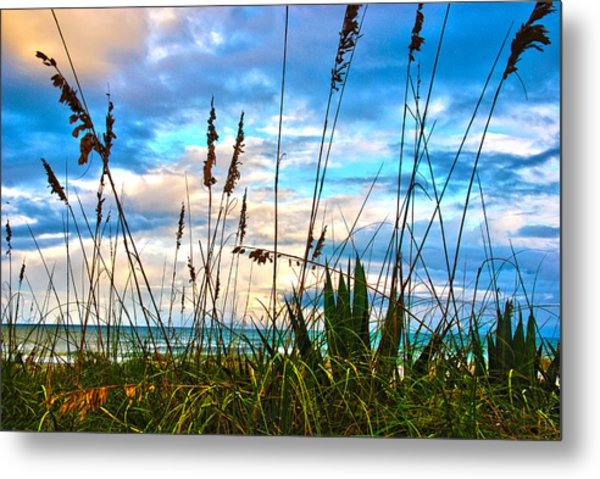November Day At The Beach In Florida Metal Print