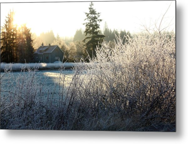 November Morning Metal Print by Barbara  White