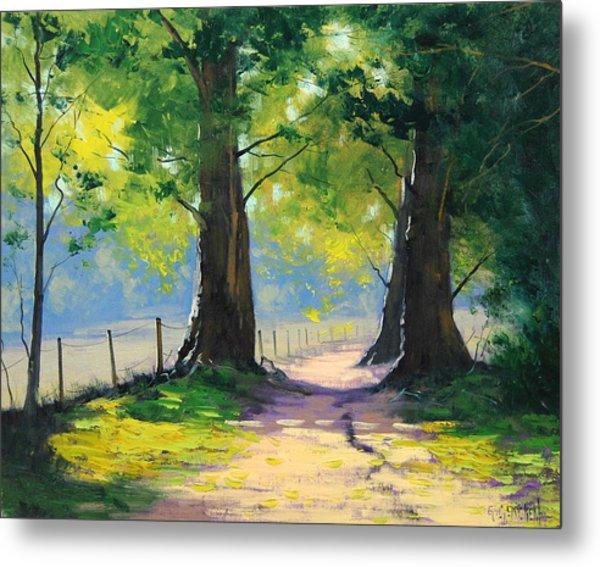 Oak Tree Trail Metal Print