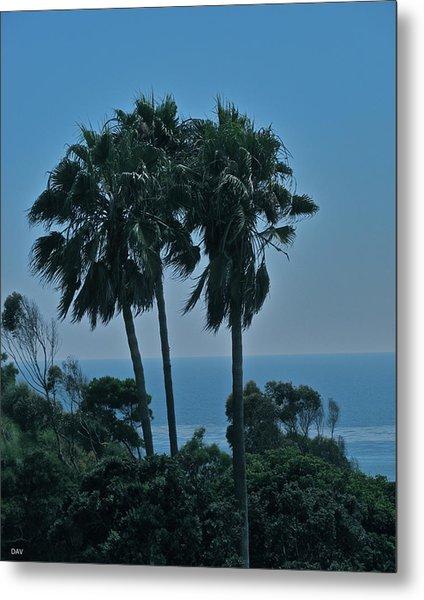 Ocean Brezze Palms Metal Print