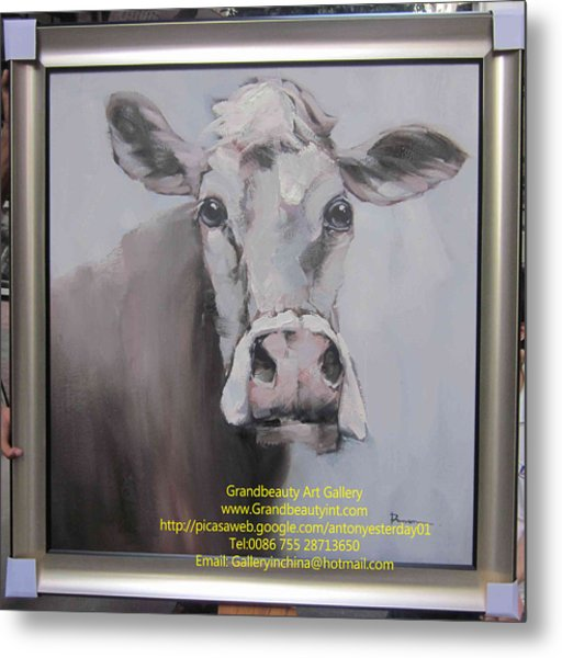 Old Cow Metal Print by Darren