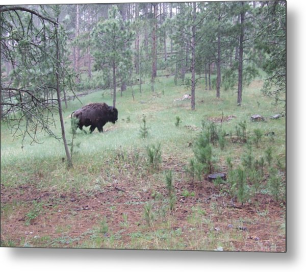 On The Move Metal Print by Dennis Wilkins