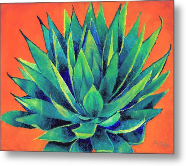 Orange And Agave Metal Print