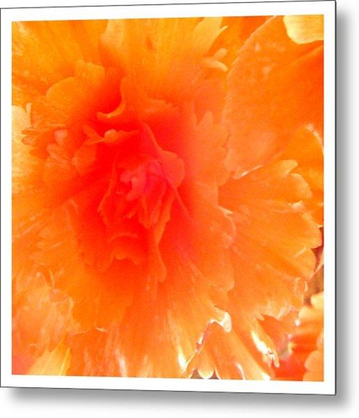 Orange Blast Metal Print