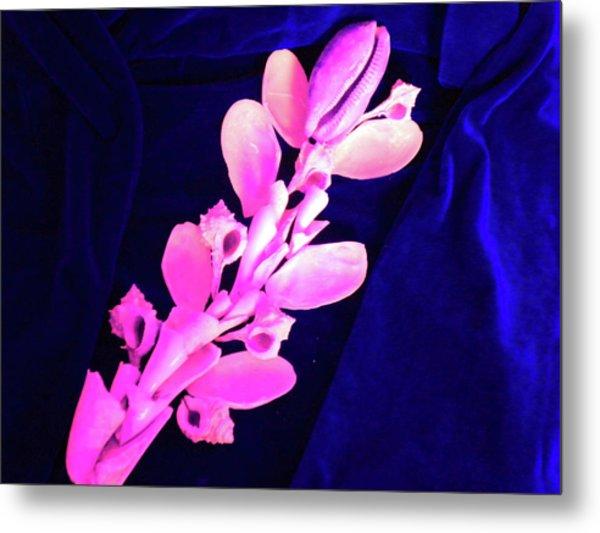 Orchidaceae Shell Metal Print by Arlin Jules