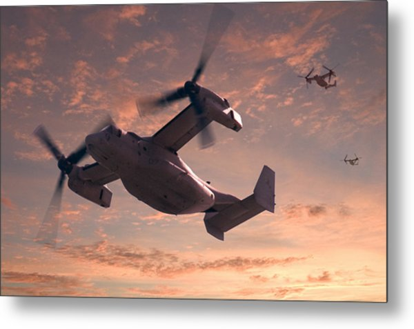 Ospreys In Flight Metal Print