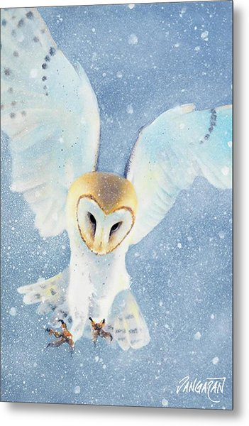 Owl Detail Metal Print