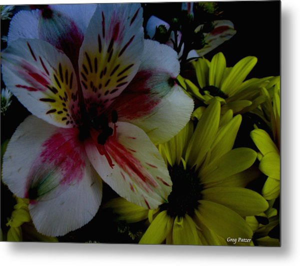 Painted Lily Metal Print by Greg Patzer