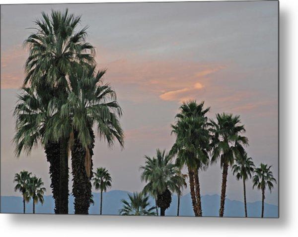 Palm Desert Sunset  Metal Print
