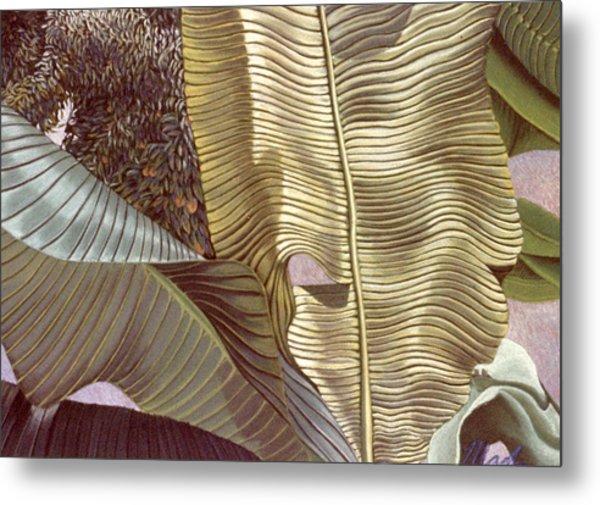 Palm Leaves And Orange Tree Metal Print by Stephen Mack